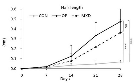 The results of a scientific study showing the efficacy of oleuropein and minoxidil